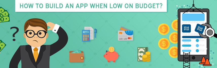 How to build an app when low on budget-Promatics Technologies
