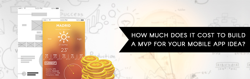 How Much Does It Cost to Build a MVP for Your Mobile App Idea - Promatics Technologies