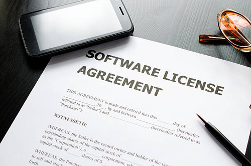 Software Licenses Costs