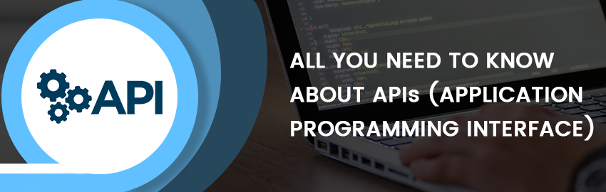 All you need to know about API (Application Programming Interface)-Promatics Technologies